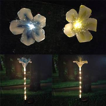 kiudoptiline lillede kaunistamine valgus